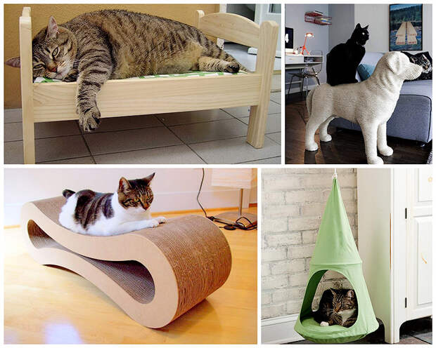 BIGPIC79 Дизайн для котов