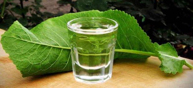 Водка и листья хрена излечили от цирроза: старинный  деревенский рецепт. И еще 14 действенных способов лечения страшной болезни