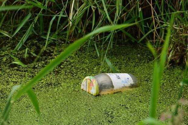 Минприроды назвало самые загрязненные российские реки