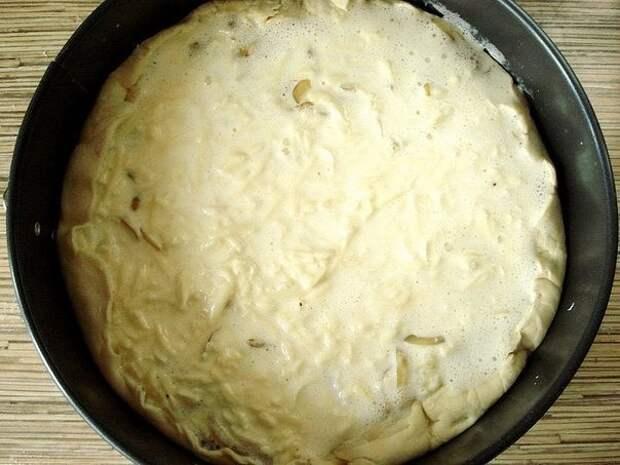 Луковый пирог 4