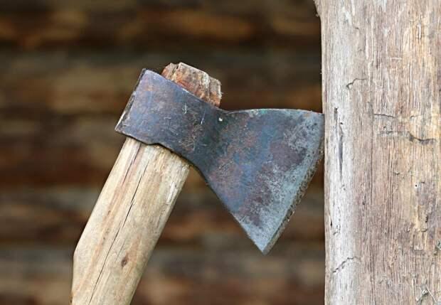 Метнувший топор в полицейского житель Удмуртии получил 4 года «строгача»