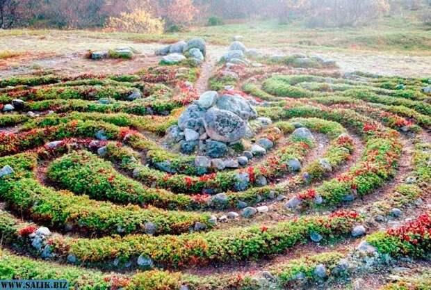 Каменный лабиринт «вавилон», Большой Заяцкий остров, Соловки.