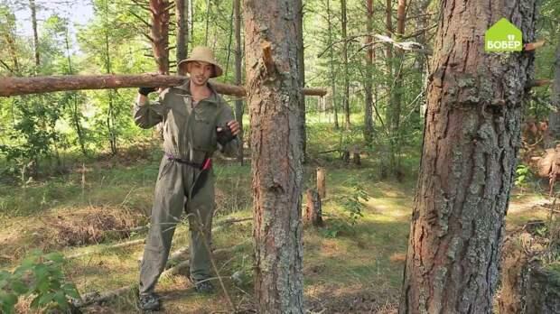 Заготавливаем дрова без пилы и топора