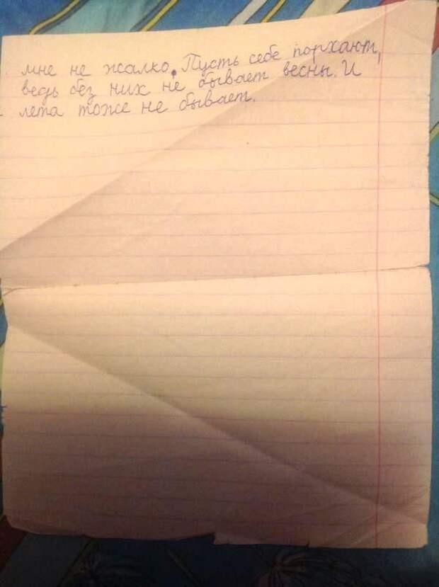 Школьник написал сочинение по басне «Стрекоза и Муравей». И это нечто!