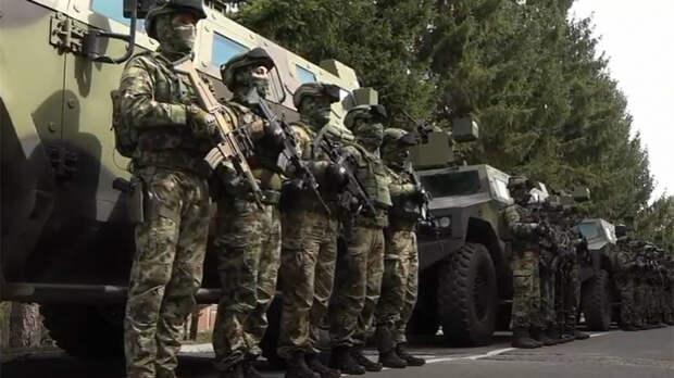 Российский эксперт оценил вероятность масштабной операции Сербии в Косово