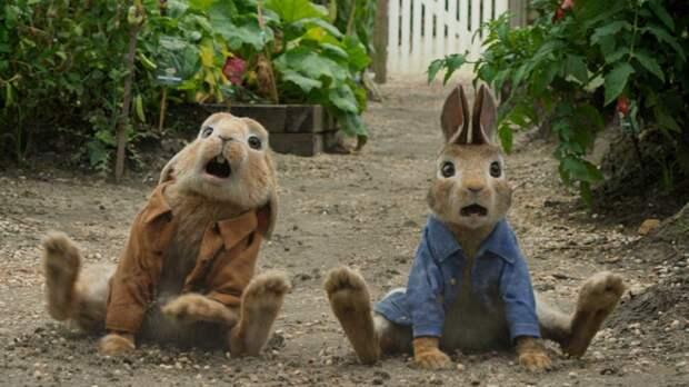 Sony перенесла релиз сиквела «Кролика Питера» с апреля на август