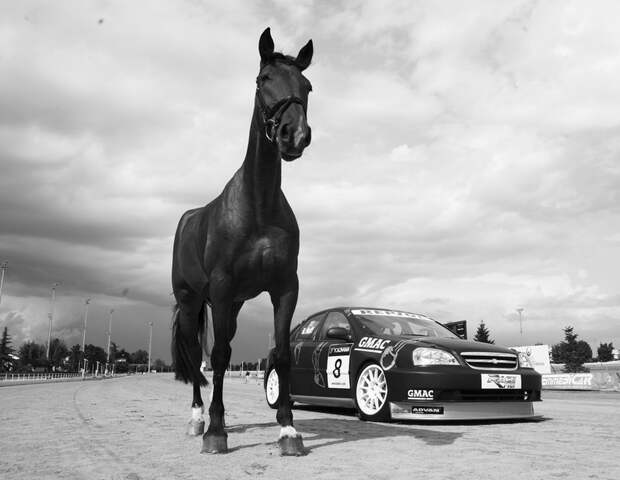Что такое лошадиная сила, и чему она равна