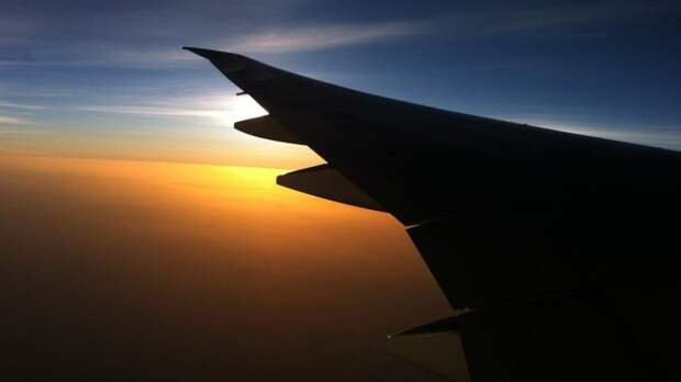 Самолет Boeing 787-800 экстренно сел в Новосибирске по пути в Токио
