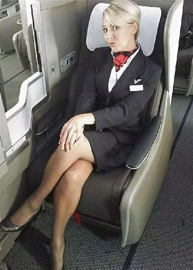 Ножки стюардесс. Подборка chert-poberi-styuardessy-chert-poberi-styuardessy-33360108022021-3 картинка chert-poberi-styuardessy-33360108022021-3