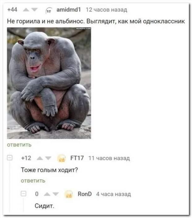 Смешные комментарии. Подборка chert-poberi-kom-chert-poberi-kom-59560217102020-8 картинка chert-poberi-kom-59560217102020-8