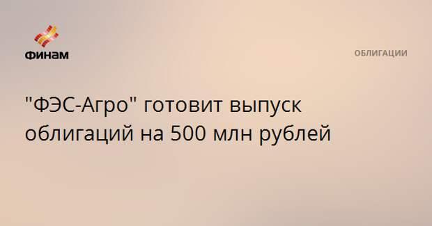 """""""ФЭС-Агро"""" готовит выпуск облигаций на 500 млн рублей"""