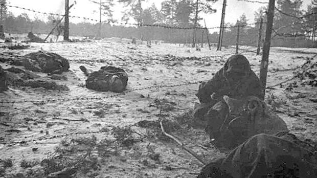 Русских убьёт эпидемия. Как немцы создали живую бомбу из 53 тысяч человек