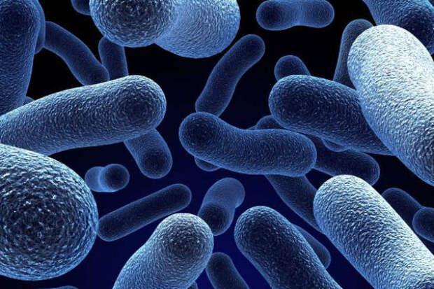 Ученые назвали пробиотики вредными