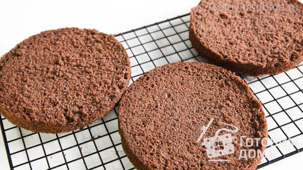 Сочный Шоколадный Бисквит фото к рецепту 18