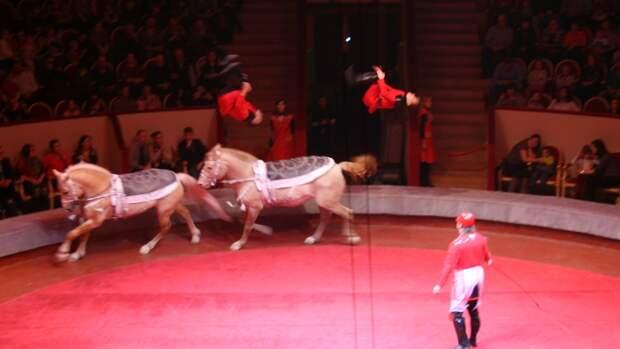 Пропавшую в Новокузнецке семилетнюю девочку нашли на цирковом представлении