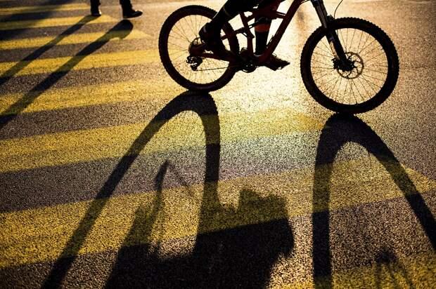 Велосипед. Фото: Префектура ЮВАО