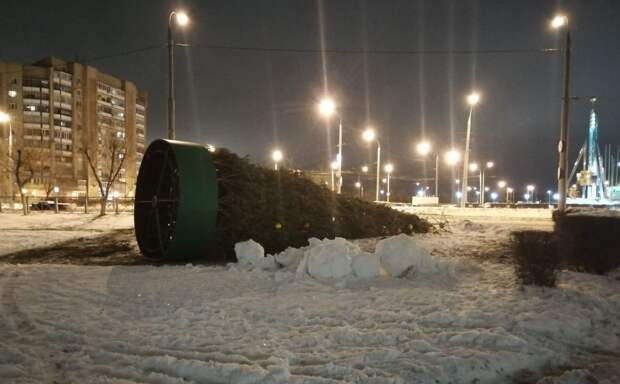 Штормовой ветер повалил три новогодние елки в Оренбурге