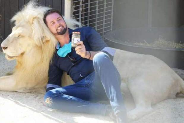 Мюнхенский цирк Krone  продаёт львиные фекалии