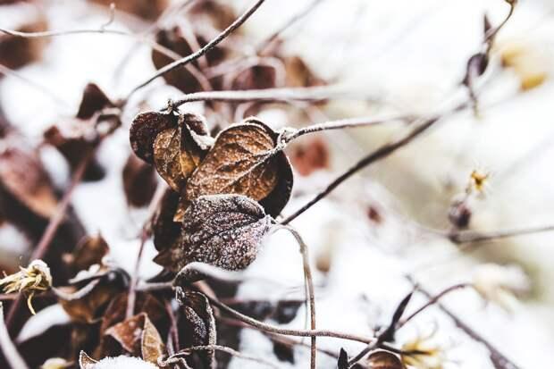 До -10 градусов похолодает в Удмуртии днем понедельника, 16 ноября