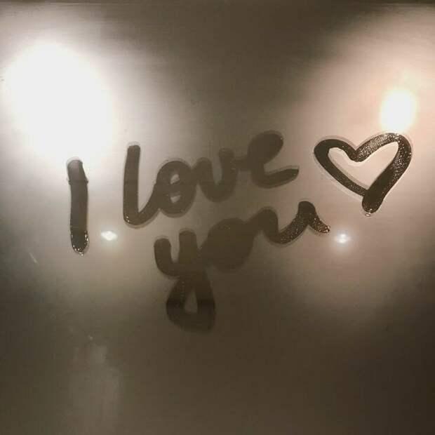 Любовь ко всему