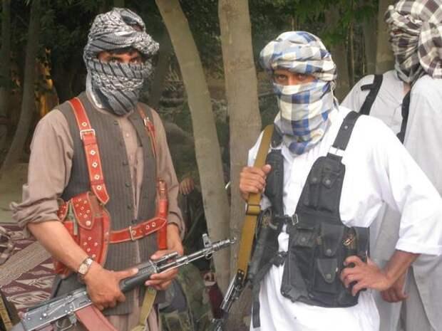 Немецкий эксперт: Вывод войск США из Афганистана может стать «призывом к пробуждению» талибов во всем мире