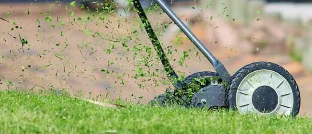 Между домами на Юннатов приведен газон в порядок