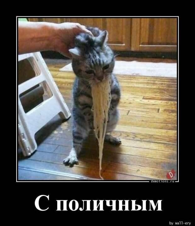 Demotions.ru - ДЕМОТИВАТОРЫ. » Страница 179