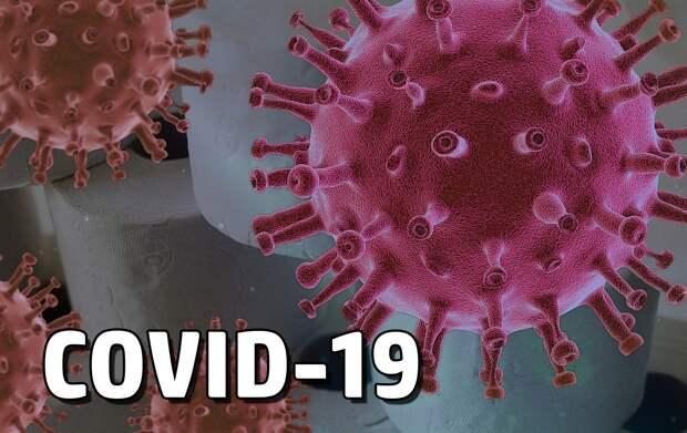 Севастополь обогнал Крым по количеству новых заразившихся коронавирусом