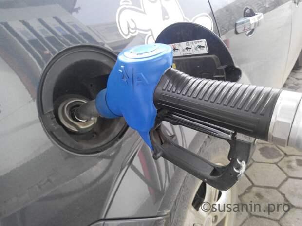 Бензин подорожал в Удмуртии в новогодние праздники