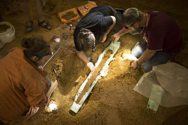 Найденный в Гнездове тысячелетний меч будет храниться в Москве