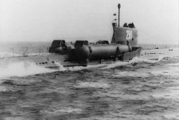 SS-N-3a Shaddock («Помело»). Предшественник современных «Калибров»