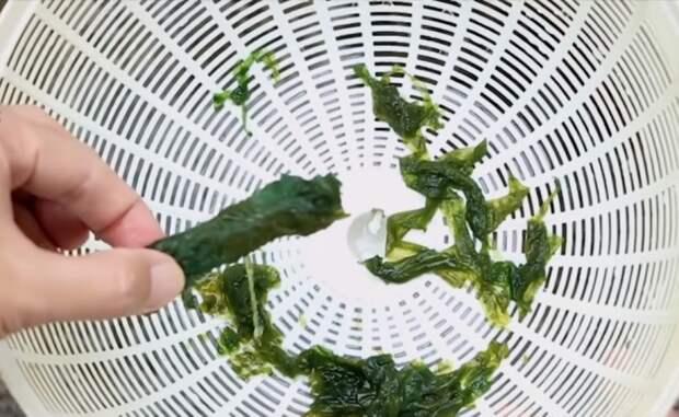 Кусочек жесткой части губки – и шланг очищен от водорослей.
