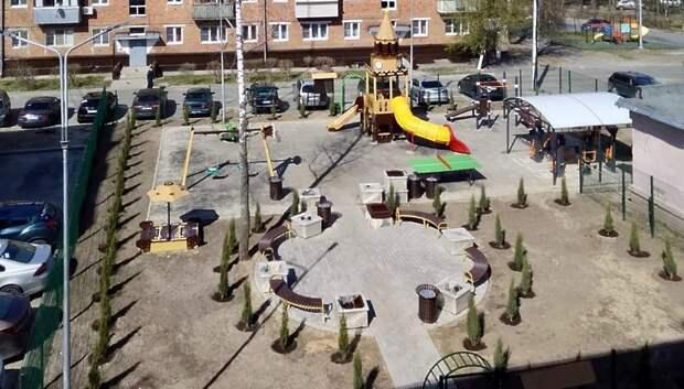 75 кустов можжевельника высадили во дворе Подольска