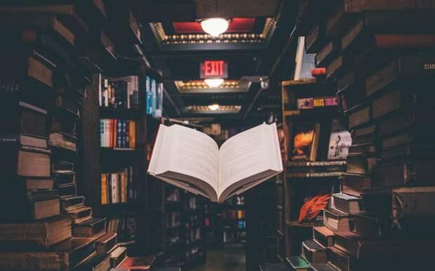 В читальне на Будайском пройдет мультпарад и акция «Книги в добрые руки»