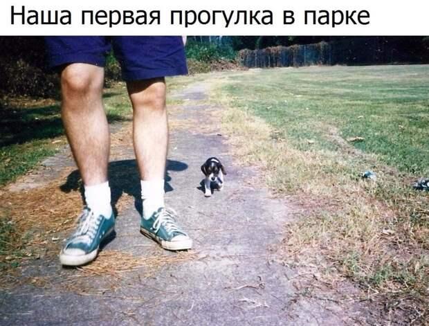 Забавные картинки с надписями со смыслом (11 фото)