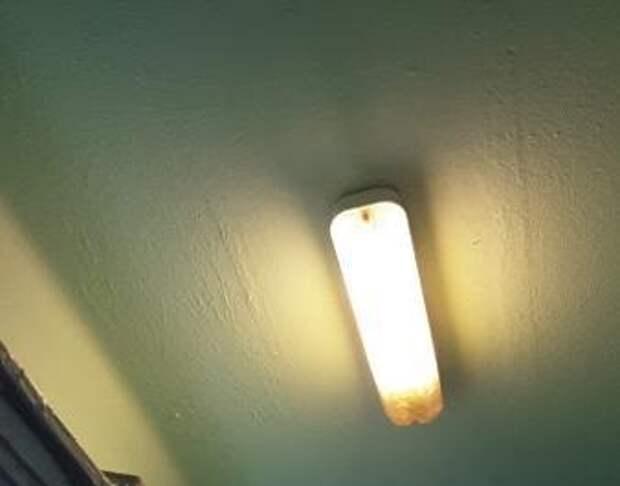 В подъезде дома на 9-й Северной линии восстановили освещение