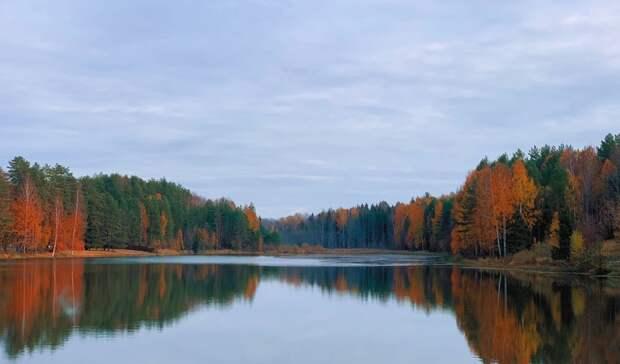 Глава Удмуртии написал про осень по-удмуртски