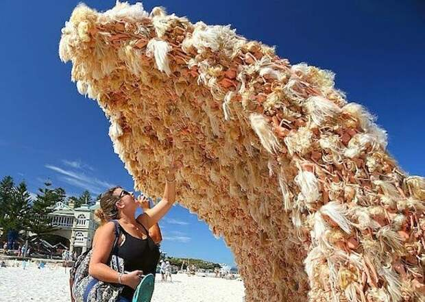 Австралийцы построили волну из Барби