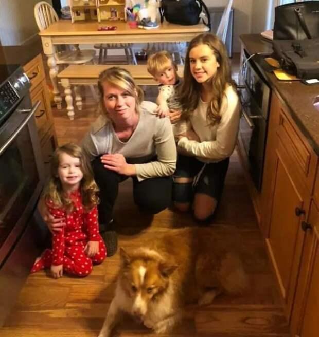 Собаку нашли через 2 месяца после того, как ее унес торнадо