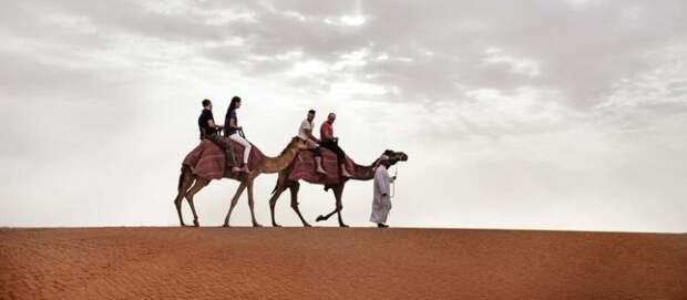 Чем заняться в Дубае