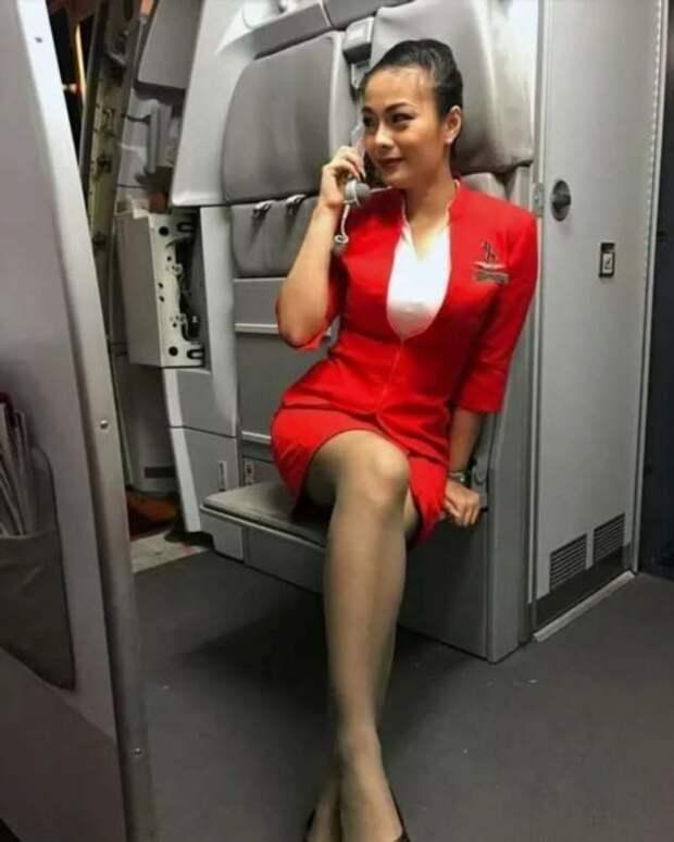 Ножки стюардесс. Подборка chert-poberi-styuardessy-chert-poberi-styuardessy-33360108022021-4 картинка chert-poberi-styuardessy-33360108022021-4