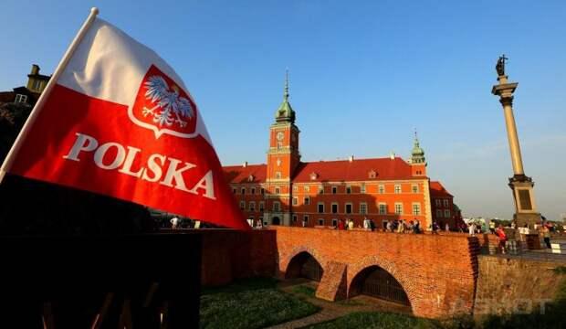 Польский сенатор стал посмешищем на родине, не сумев въехать в РФ