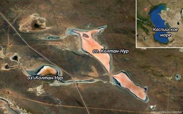 Озеро Колтан-Нур расположено к северо-западу от Каспийского моря на территории Калмыкии. Водоем состоит из двух частей. В верхнем правом углу озеро отмечено красной точкой. Вид со спутника.