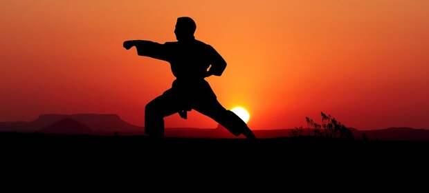 Каратэ, Ката, Спорт, Защищать, Бой, Положение, Человек