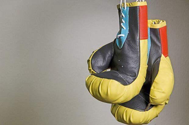 Бокс, перчатки/Фото: pixabay.com