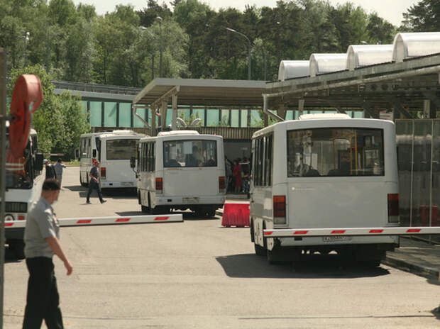 Очередь из мигрантов в Путилково спрятали за автобусами