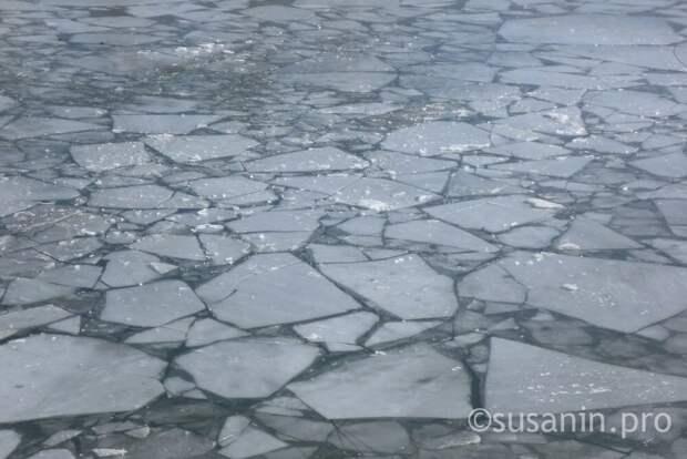 Крещенские купания в Глазове отменили из-за тонкого льда
