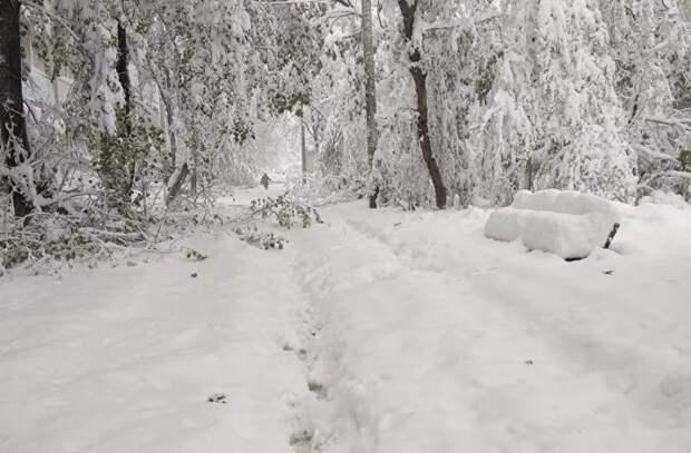 Снег по колено посреди весны: Что произошло в Молдове четыре года назад