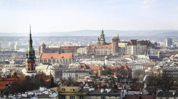 Молоко от коронавируса и защитные талисманы: В Польше появились чудо-лекари