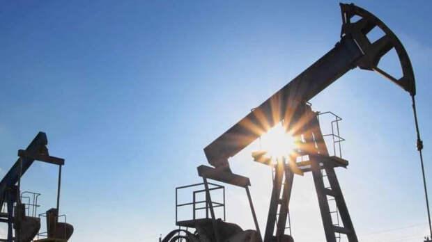 Глава Минприроды оценил, на сколько хватит нефти и газа России